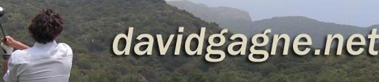 davidgagne.net logo