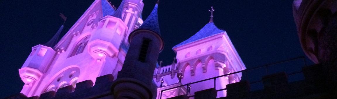 #FridayFive: Disneyland Rides
